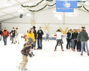 Bellevue Ice Skating at Downtown Park | Bellevue.com